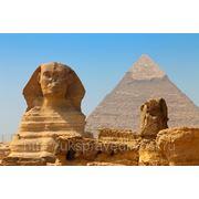 Египет - поездка и отдых!!! фото