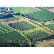 Распродажа земель в СПб и Л.О. под жилую и деловую застройку фото