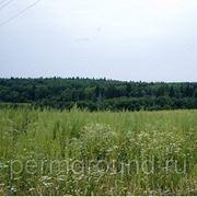 Продажа земли в д. Валеваи фото