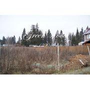 Продажа земельного участка 15 соток в элитном коттеджном поселке 38 км от МКАД Киевское шоссе фото