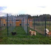 Номера с автономным подогревом и терраса с подогревом полов для маленьких и средних собак фото