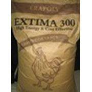 """Защищённый жир """"EXTIMA 300"""" фото"""
