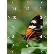 Часы на стекле (Дизайнерские часы) фото