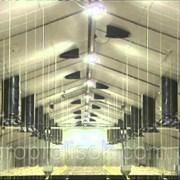 Вентиляция животноводческих ферм фото