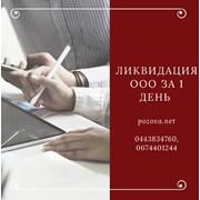Ликвидация ООО за 1 день Одесса фото