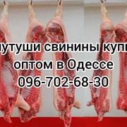 Мясо свинины Одесса цена фото