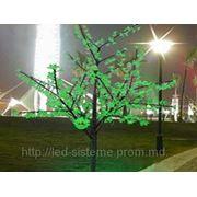 """Светодиодное дерево """"Сакура"""" 540 LED. фото"""