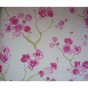 Blossom фото