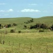 Аренда земли сельхозназначения в Украине фото