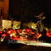 Художественное освещение сада фото