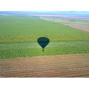 Путешествие на воздушном шаре фото