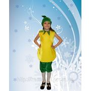 Груша-костюм карнавальный фото