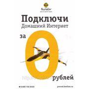 Домашний интернет Билайн 295 рублей за 1500 кб/с (Безлимит) фото