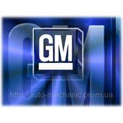 Антифриз General Motors Frostschutz Rot, Long Life (5 Liter) - 19 40 678 фото