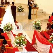 Оформление помещений живыми цветами Белая Церковь фото