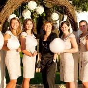 Проведение свадеб. фото