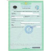 Регистрация права на недвижимость фото