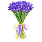 Цветы ирисы продажа, Астана, доставка фото