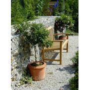 Габионное заграждение для сада фото
