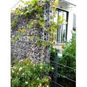 Габионный забор для дачи фото