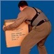 Бандаж пiдтримуючий (для пiдняття ваг), розмiр 3 фото