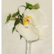 Бутоньерки из живых цветов, бутонерки из орхидей фото
