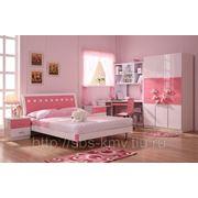 Молодёжная комната «ДФА Роза» фото