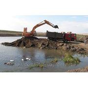 Расчистка берега, благоустройство пляжа, расчистка прибрежных территорий фото