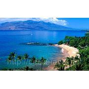 Туристическая деятельность: учет, налоги, право фото