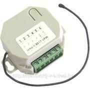 Радиокарта двухканальная 9-24В Intro II 8517 UPM фото