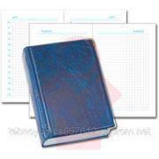 Деловой дневник черный, обложка: баладек (2170204)