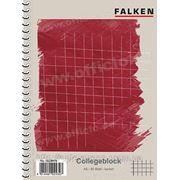 Блокнот на спирали слева формата А5 на 80 листов в клетку FALKEN 10228476 фото