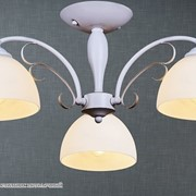 Reluce 02259-0.3-03A светильник потолочный фото