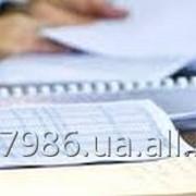 Проведение анализа законности (обоснованности) акта налоговой проверки, составление и подача возражений на акт фото