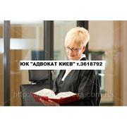 УСЛУГИ ИНТЕРНЕТ-АДВОКАТА фото
