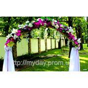 Свадебная арка орхидея фото