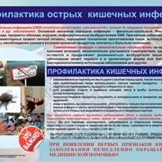 Плакат Профилактика острые кишечные инфекции К.13 фото