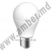 Светодиодная лампа HL 4308L 8W 220-240V E27 6400K Horoz (33275) фото