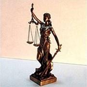 Правовой консалтинг фото