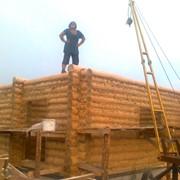 Деревянный сруб. фото