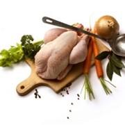Мясо цыплят фото