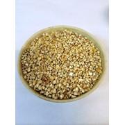 Зародыш кукурузы в наличии фото