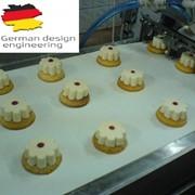 Автоматическая линия снеков из сыра и творога(лицензия Германии) Видео в описании фото