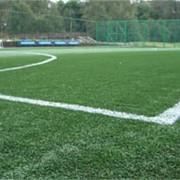 Аренда футбольного поля в Алматы фото