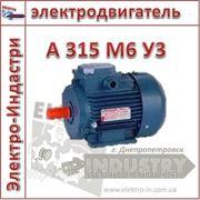 Электродвигатель А 315 М6 У3 фото