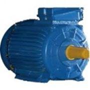 Электродвигатель 75/1000 4АМ280М4 1081 фото