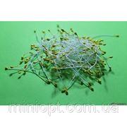 Тычинки желтые 10 шт. фото