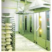 Закупка и переработка зерновых (пшеница). фото