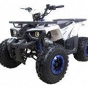 Квадроцикл Avantis Hunter 7 New фото