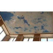 Роспись стен, потолков, мебели, межкомнатных дверей, зеркал. фото